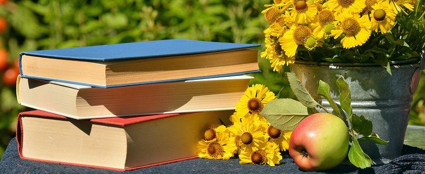 OBRÁZEK : books-1757734__340.jpg